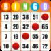Bingo – Free Bingo Games APK