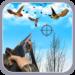 Bird Shooter – Hunting Shooting FREE Arcade Game APK