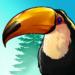 Birdstopia – Idle Bird Clicker Oasis APK