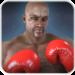 Boxing – Fighting Clash APK
