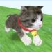 Cat Run APK