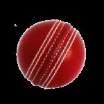 Cricket Simulator Online Generator