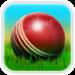 Cricket 3D APK