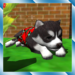 Cute Pocket Puppy 3D APK
