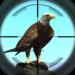 Desert Birds Sniper Shooter – Bird Hunting 2018 APK
