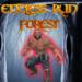 Endless Run Forest APK