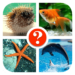 Fish Quiz APK