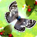 Flutter: Butterfly Sanctuary APK