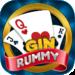 Gin Rummy APK