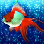 Goldfish Friends APK