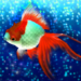Goldfish Friends APK