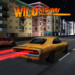 Highway Wild Traffic Racing 2018 APK