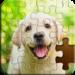 Jigsaw Puzzle APK