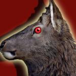 Jungle Deer Hunting 3D-sniper shooting 2018 HD APK