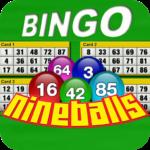 Nine Balls Video Bingo APK