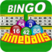 Nine Balls Video Bingo APK