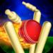RunOut Master – 3D Cricket APK
