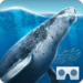 Sea World VR2 APK