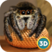 Spider Pet Life Simulator 3D APK