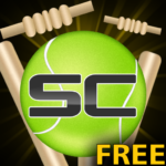Street Cricket APK