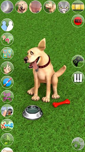 Talking John Dog Funny Dog ss 1