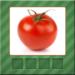 Vegetables Quiz picture APK