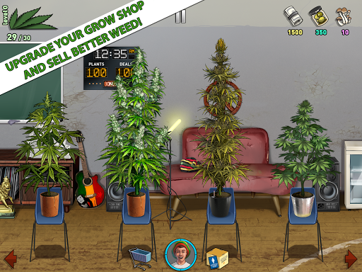 Weed Firm 2 Back to College ss 1