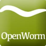 WormWorx APK