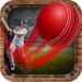 Onegame Cricket 2019 APK