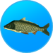 True Fishing. Fishing simulator APK