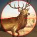 Hunting Sniper 3D APK
