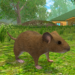 Code Triche Mouse Simulator  – Ressources GRATUITS ET ILLIMITÉS (ASTUCE)