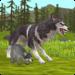Code Triche WildCraft: Sim sauvage en ligne 3D  – Pièces GRATUITS ET ILLIMITÉS (ASTUCE)