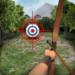 Archery Big Match APK