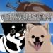 Code Triche Champyon  – Ressources GRATUITS ET ILLIMITÉS (ASTUCE)