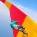 BMX Stunt Tricks Master APK