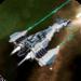 Code Triche Colony Attack  – Ressources GRATUITS ET ILLIMITÉS (ASTUCE)