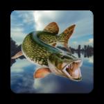 Code Triche Рибалка в Єрках  – Ressources GRATUITS ET ILLIMITÉS (ASTUCE)