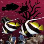 Code Triche Sea Fish Farm Aquarium  – Ressources GRATUITS ET ILLIMITÉS (ASTUCE)