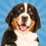 Code Triche chien ville mon animaux simulateur 3d  – Ressources GRATUITS ET ILLIMITÉS (ASTUCE)