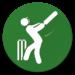 Cricket Scorer APK