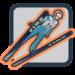 Fine Ski Jumping APK