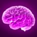 Genius Brain APK