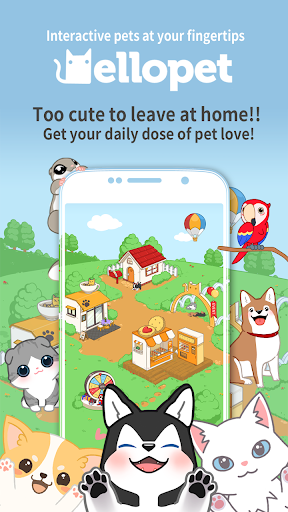 Hellopet – Cute cats dogs and other unique pets ss 1