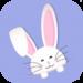 Super Bunny Run APK