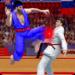 Tag Team Karate Fighting Tiger: World Kung Fu King APK