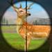 Code Triche Wild Animal Gun Shooting:Animal Hunting Games 2020  – Ressources GRATUITS ET ILLIMITÉS (ASTUCE)