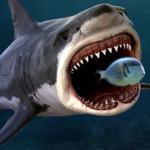 Code Triche King of the Fish Tank: It's a fish eat fish world  – Ressources GRATUITS ET ILLIMITÉS (ASTUCE)