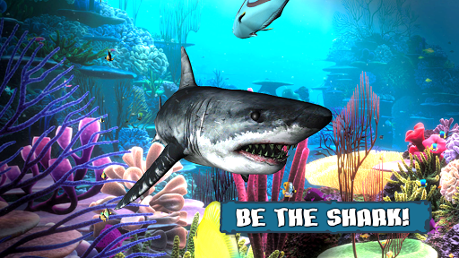 King of the Fish Tank Its a fish eat fish world ss 1