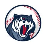 Code Triche Astonishing Baseball Manager 2019  – Ressources GRATUITS ET ILLIMITÉS (ASTUCE)